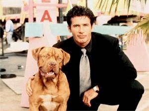 Psy z film w kar for Tequila e bonetti cane