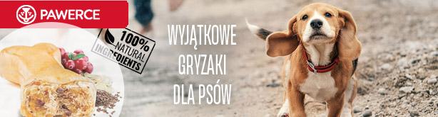 Gryzaki Pawerce